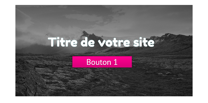 bouton appel action site