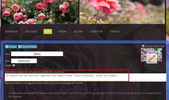 Decrire pages de blog pour SEO