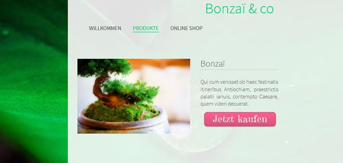Maßgeschneiderte Buttons zu Ihrem Onlineshop hinzufügen, um Ihren Umsatz zu steigern
