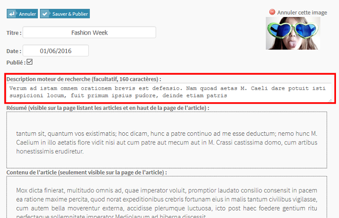 Meta-descriptions pour mes pages de blog