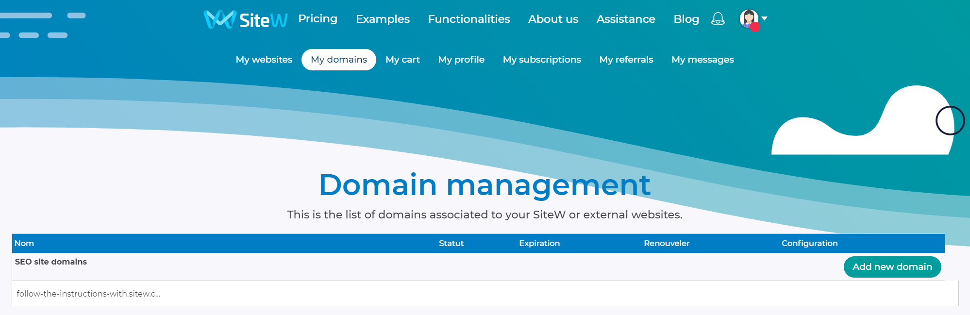 booking a domain name with sitew