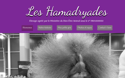 Example website Caniches
