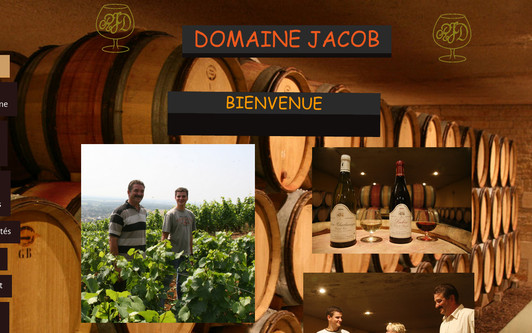 Site exemple domainejacob