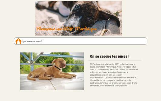 Ejemplo de sitio web RSP Martinique