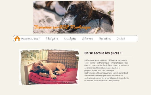 Example website RSP Martinique