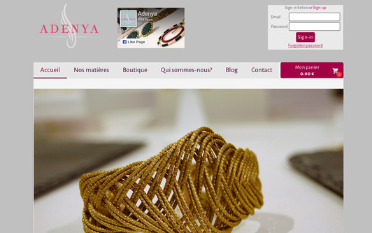 Example website Adenya