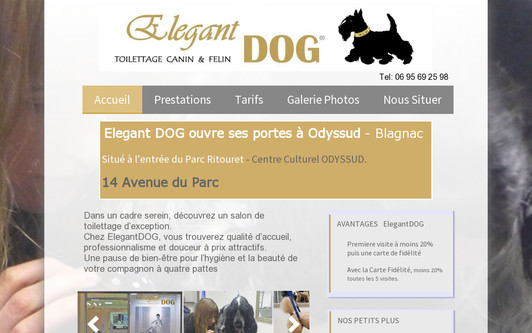 Example website ElegantDog