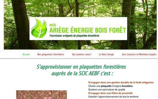 Ejemplo de sitio web SCIC Ariège Energie Bois Forêt