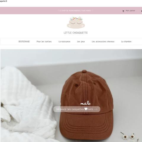 Website design software