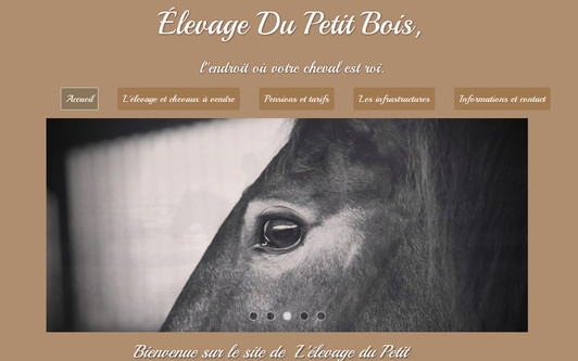 Example website Élevage Du Petit Bois