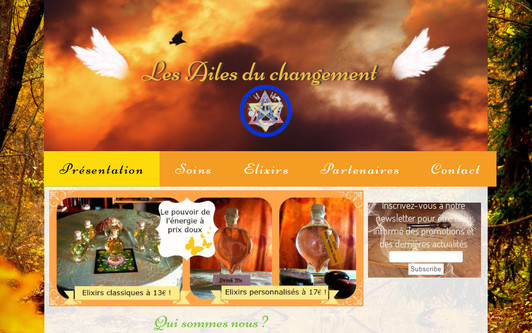 Example website Les Ailes du changement