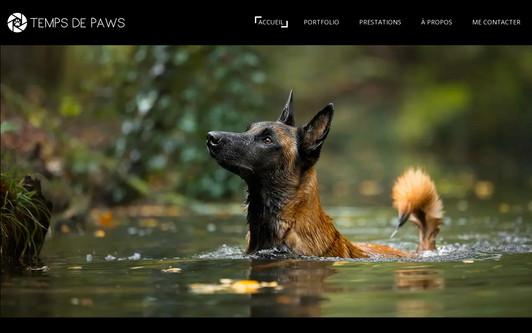 Site exemple Temps de Paws - Photographe animalier pour chien, chat et bien d'autres