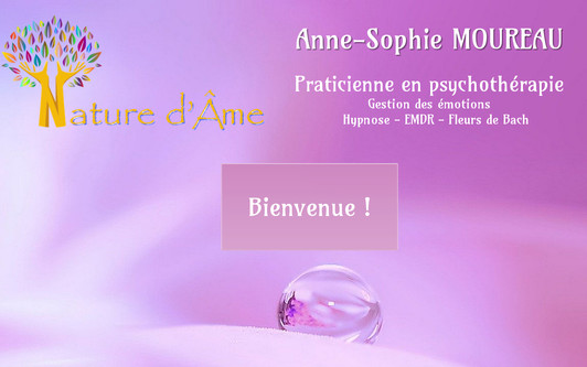Example website Nature d'âme