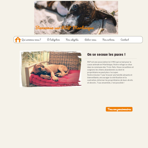 Create php website