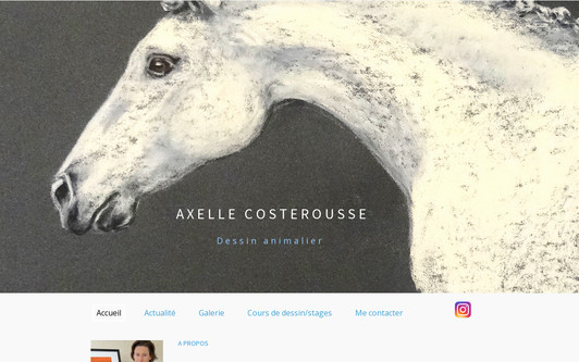 Example website Axelle Costerousse