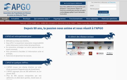 Ejemplo de sitio web Association APGO
