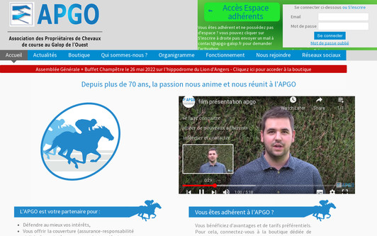 Ejemplo de sitio web Association APGO