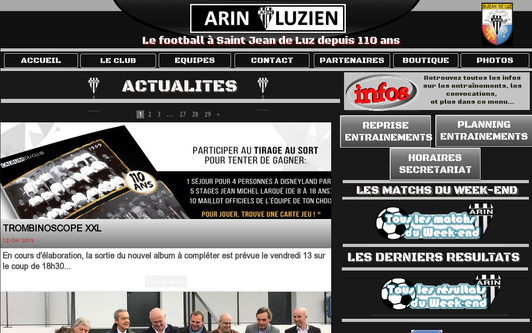 Example website Arin Luzien