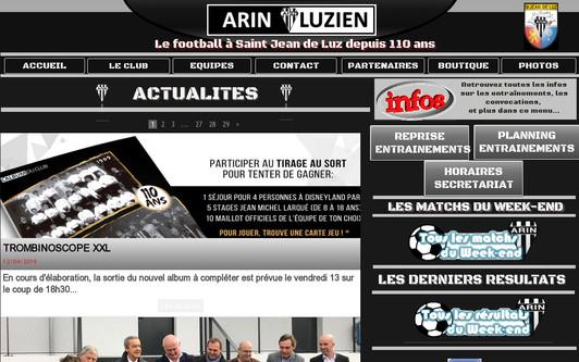 Ejemplo de sitio web Arin Luzien