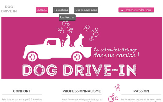 Example website dogdrivein